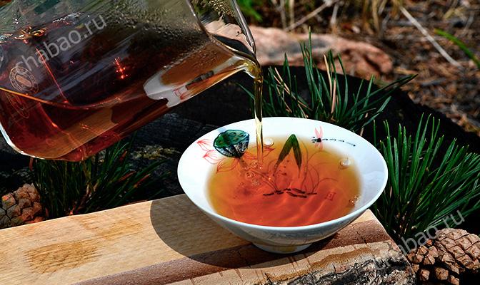 Наливаем чай Сосновые иглы